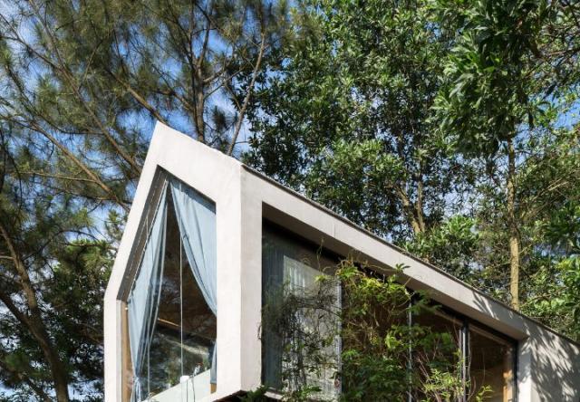 Nhà 40 m2 cheo leo trên vách núi ven rừng thông ở Hà Nội
