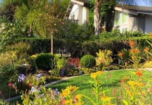 Ngắm ngôi nhà thanh bình và khu vườn đẹp lung linh trên đất Mỹ của MC Nguyễn Cao Kỳ Duyên