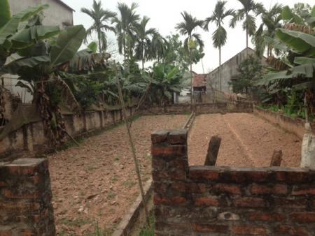 Chính chủ bán 100m2 đất tại Thôn Táo, huyện Phúc Thọ, cách cầu Phùng 500m, LH 0982468799