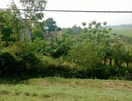 Cần bán đất thổ cư và đất vườn tại Xã Minh Trí, Huyện Sóc Sơn, Hà Nội