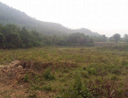 Bán 1 ha đất trang trại gần Đại Lộ Thăng Long Huyện Thạch Thất, Hà Nội
