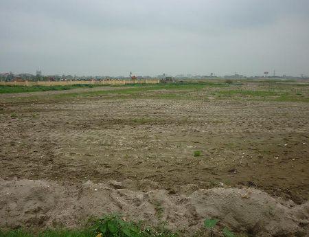 Cho thuê đất trống tại Hà Nội, Long Biên 4000m2 gần cầu vượt 5 cũ