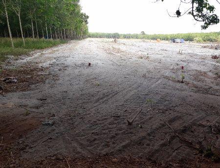 bán đất dự án khu công nghiệp minh hưng 3