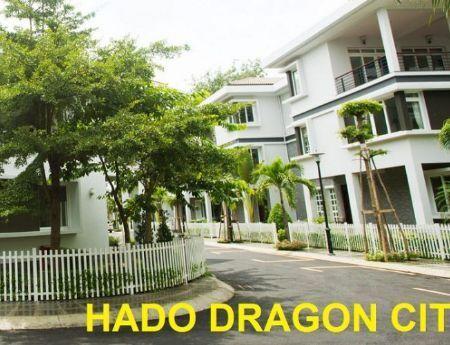 Hado Dragon City